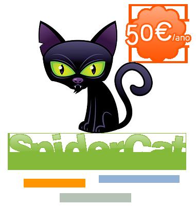 SpiderCat Promotion